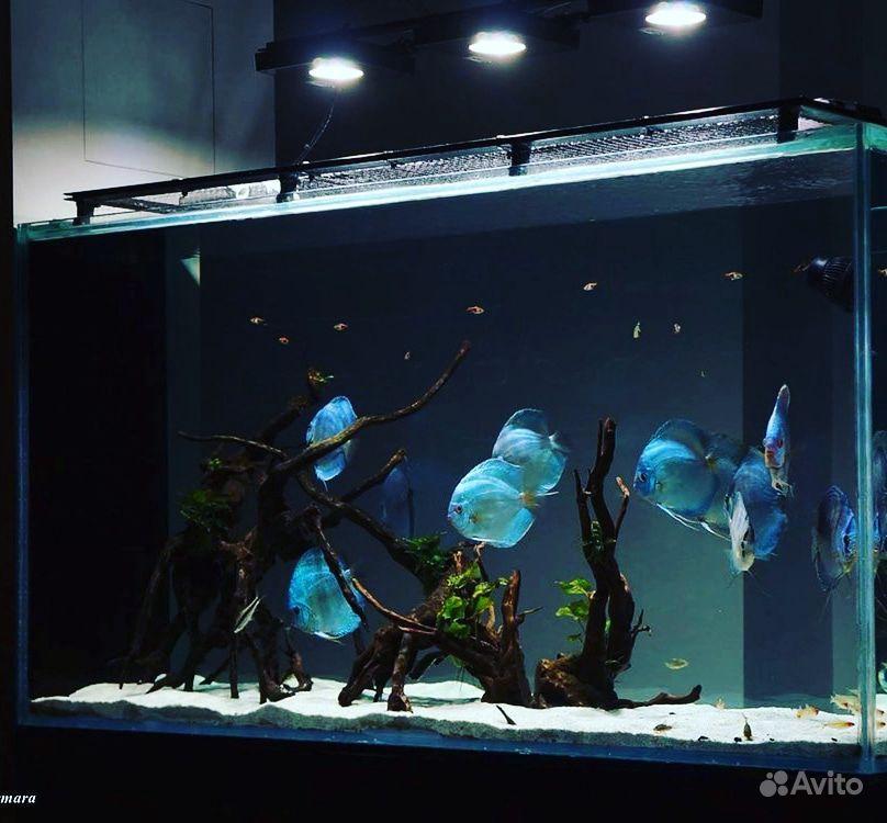 Дизайн аквариума купить на Зозу.ру - фотография № 3