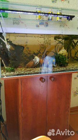 Тумбы для аквариума  иркутск