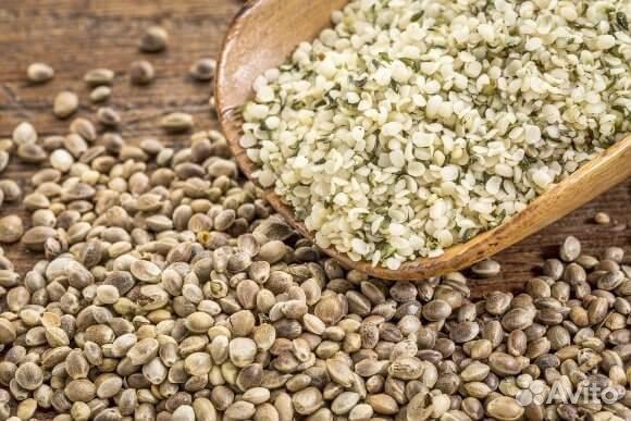 Семена канабиса доставка по москве города в которых легализована марихуана