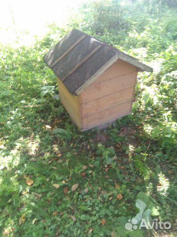 Пчелы с домиками 89082811313 купить 5