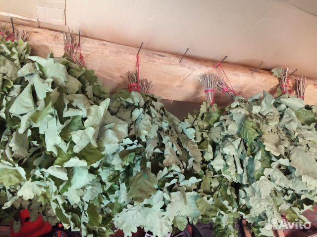 Веник дубовые, липовые, березовые с травами  89501639171 купить 5