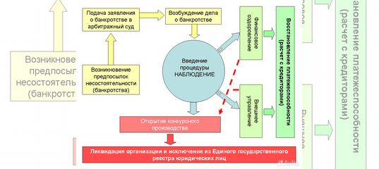 процедуры банкротства в калининградской области