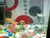 Аквариум Jebo R331 со всеми прибамбасами и рыбками