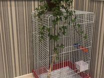 Клетка для средних и крупных попугаев