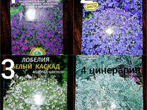 Цветочная рассада